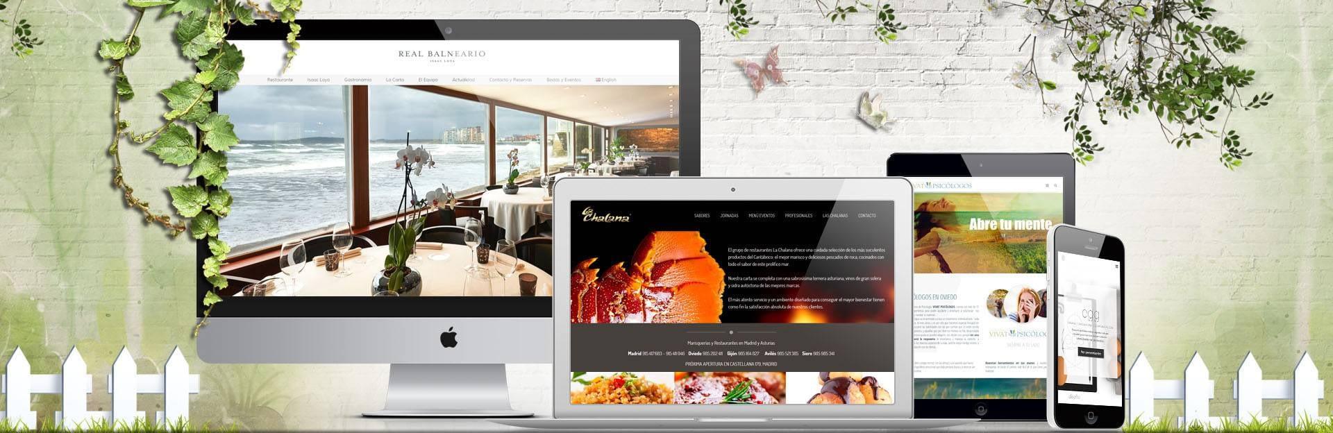 diseño de páginas web en oviedo